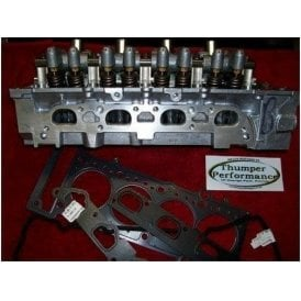 TPR1 Mini Cylinder Head  Thumper Performance