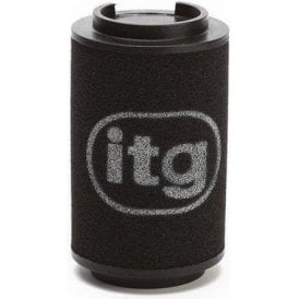 R53 JCW Cooper S ITG Replacement Filter Element